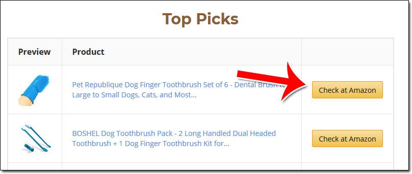 Amazon Affiliate Links Example